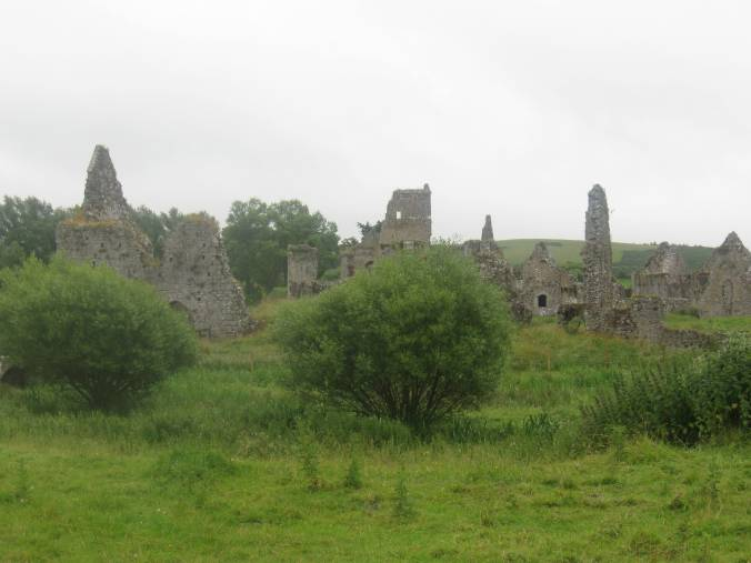 The ruins of the monastery at Athassel.